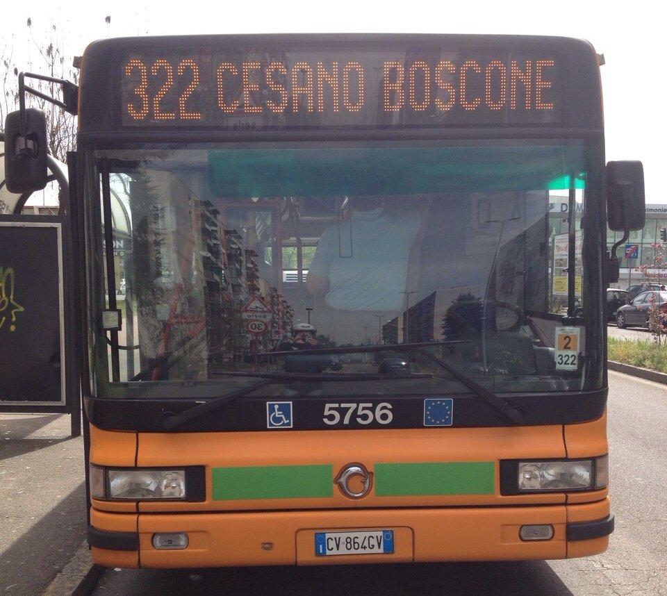 linea322.jpg